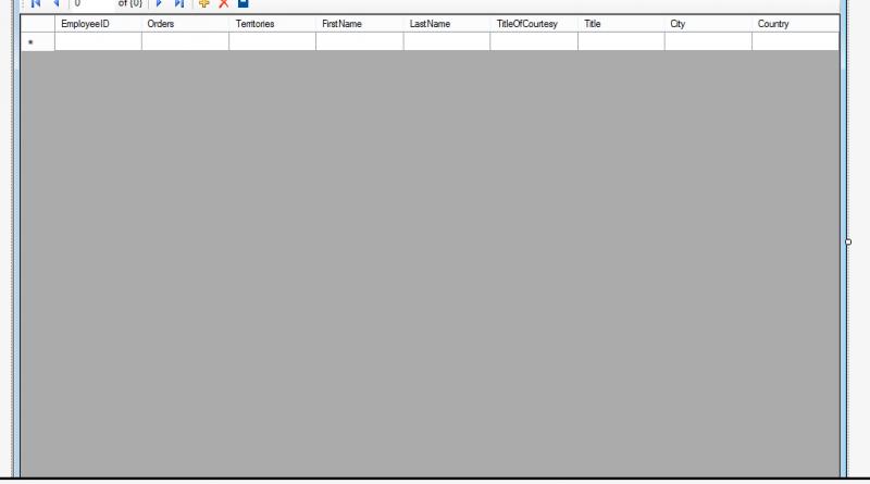 Windows Form Data Binding